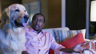 Netflix kijken met je huisdier