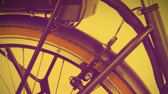 lidl, e-bike, nassau cargo III, elektrische fiets