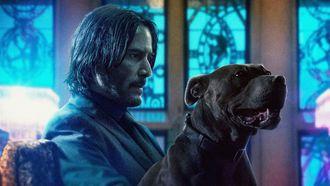 Laatste kans op Netflix John Wick films