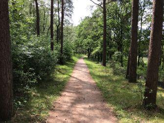 wandelen, nederland, wandelroutes