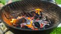 Hele kip van de barbecue bbq