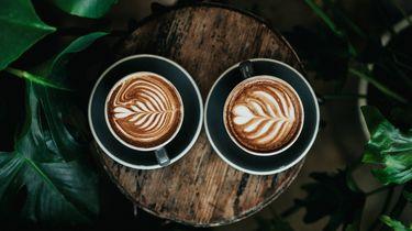 maximaal, aantal, kopjes, koffie, per, dag, onderzoek