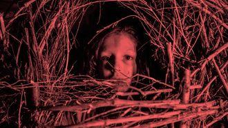 Horror-genre op zijn kop: Netflix dropt gestoorde trailer voor nieuwe film
