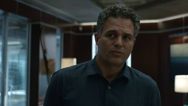 hulk, deadpool, mark ruffalo, ryan reynolds, the adam project, netflix film