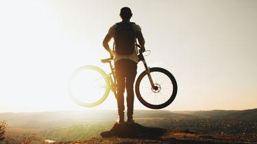 elektrische mountainbike, lidl, stunt, prophete e-bike, elektrische fiets