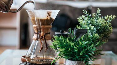 afvallen, koffie, drinken, bruin vet, onderzoek
