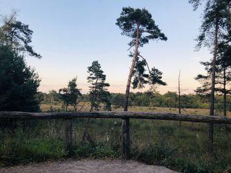 geheime wandelroutes in nederland, wandelen, hiken