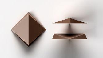tesla, chocolate chip, dandelion, nieuwe vorm