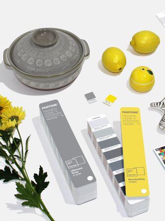 pantone, kleuren van het jaar, ultimate gray, grijs, illuminating, geel, 2021, verbinding