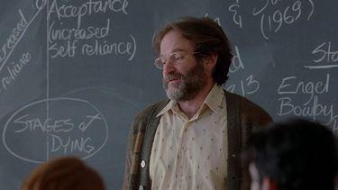 leraar, normale banen, miljonair, onderzoek, robin williams, good will hunting, leraar