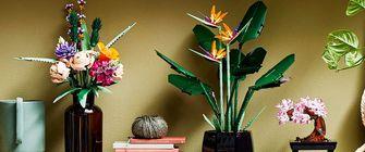 paradijsvogelplant, lego, sets. bouwset, interieur