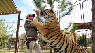 netflix, tiger king
