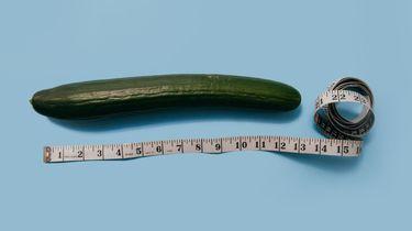 De ideale lengte van de penis volgens vrouwen