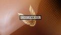 Manners droom occasion Pontiac Firebird