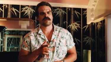 netflix, bubbel, 2019, jaar, hopper, hawaii shirt, stranger things (1)