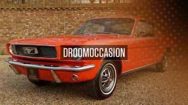 oldtimer, Tweedehands Ford Mustang 2+2 Fastback occasion