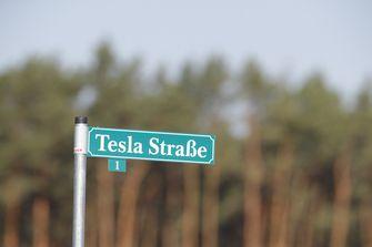 Tesla gigafabriek Duitsland, Elon Musk