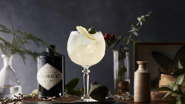 Pubquiz Hendrick's Gin