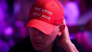 crypto bezitters, kennis, onderzoek, bitcoin, verstand, pet