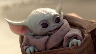 Blunder The Mandalorian Baby Yoda The Child