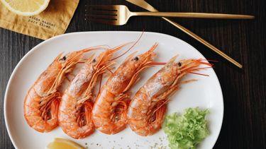 eten, voeding, microplastics, alternatieven