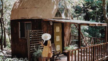populairste airbnb, wereld, hut, bos, mushroom dome cabin