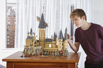 7 exclusieve en zeldzame LEGO-sets voor volwassenen die nog te koop zijn
