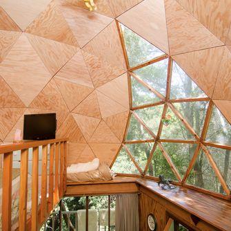 wereld, populairste airbnb, mushroom dome, hut, bos