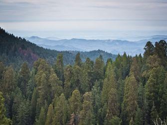 Sequoia National Park, onbekende, nationale parken, amerika